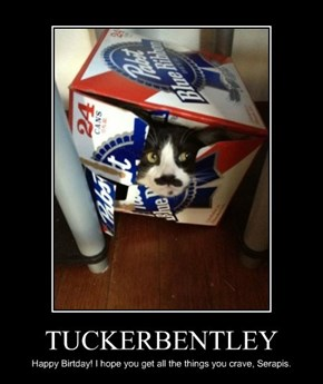 TUCKERBENTLEY