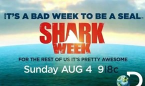 HAPPY SHARK WEEK BITCHES! 2013 !