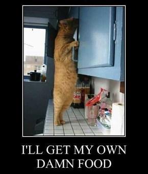 Damn Greedy Cats