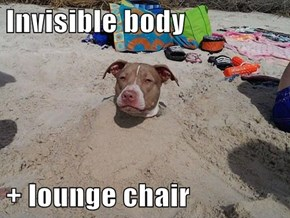 Invisible body   + lounge chair