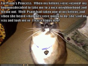 I'm Psom's Princess.  When my kittens were weaned, my hoominsdecided to take me to a nice neighborhood and let me out.  Well, Psom had taken one of my kittens and when she heard what they were going to do, she said no way and took me in.  I haz a happy na