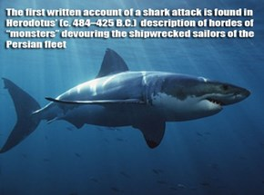 Shark Week: The History of Attacks
