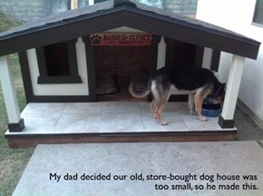 Now That's a Dog House