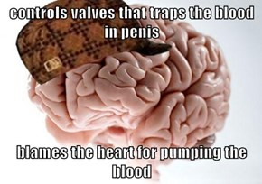 controls valves that traps the blood in penis  blames the heart for pumping the blood