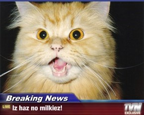 Breaking News - Iz haz no milkiez!