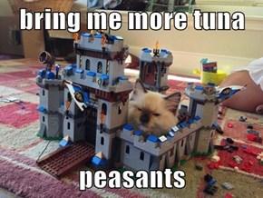 bring me more tuna  peasants