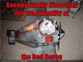 Snoopy finally discovers the true identity of  the Red Baron