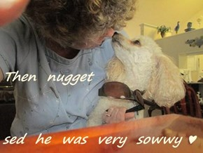 Then  nugget sed  he  was  very  sowwy ♥
