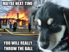 Disaster Dog
