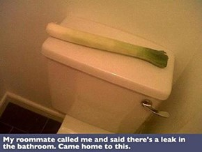 Call a Plumber, We've Got a Leak