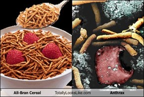 All-Bran Cereal Totally Looks Like Anthrax