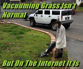 Vacuuming Grass Isn't Normal  But On The Internet It Is