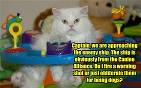 Captain, we are approaching the enemy ship. The ship is obviously from the Canine Alliance. Do I fire a warning shot or just obliterate them for being dogs?