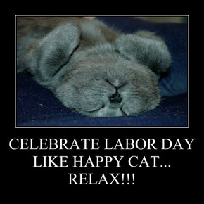 CELEBRATE LABOR DAY LIKE HAPPY CAT... RELAX!!!