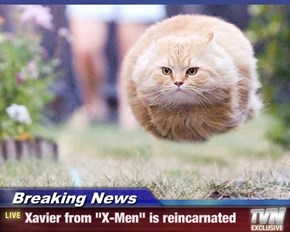 "Breaking News - Xavier from ""X-Men"" is reincarnated"