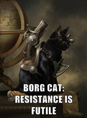 BORG CAT:       RESISTANCE IS FUTILE