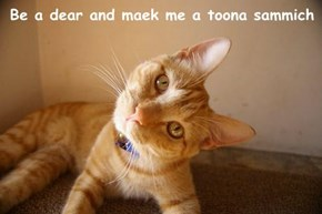 Be a dear and maek me a toona sammich