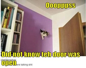 Ooopppss  Did not know teh door was open