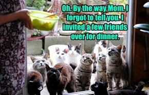 Oh. By the way Mom. I forgot to tell you. I invited a few friends over for dinner.