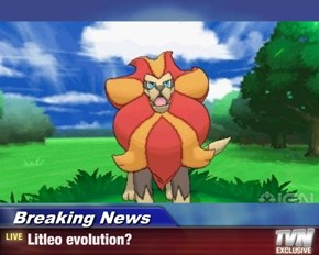 Breaking News - Litleo evolution?