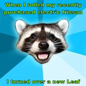 When I rolled my recently purchased electric Nissan  I turned over a new Leaf