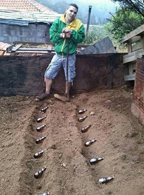 Planting Beer Bushes