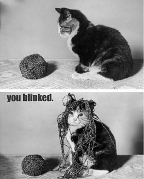you blinked.
