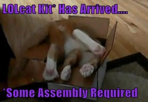 LOLcat Kit* Has Arrived....  *Some Assembly Required