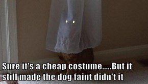 Sure it's a cheap costume.....But it still made the dog faint didn't it