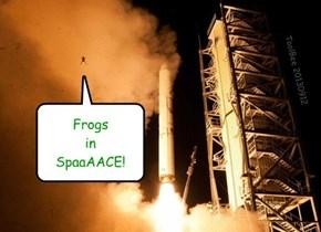Whut Da Frog?!
