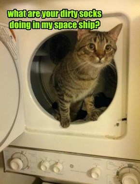what are your dirty socks doing in my space ship?
