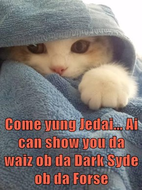 Come yung Jedai... Ai can show you da waiz ob da Dark Syde ob da Forse