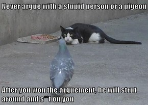 Never argue with a stupid person or a pigeon  After you won the arguement, he will strut around and s**t on you