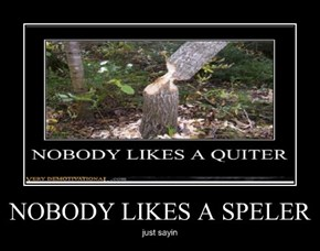NOBODY LIKES A SPELER