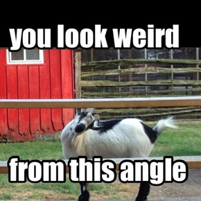 you look weird
