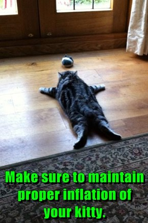 Make sure to maintain proper inflation of your kitty.