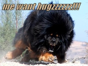 me want hugzzzzzz!!!