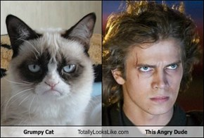 Grumpy Cat Totally Looks Like This Angry Dude