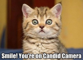 Smile! You're on Candid Camera