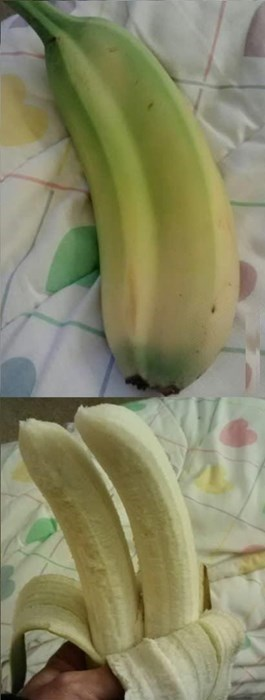 The Best Banana Ever