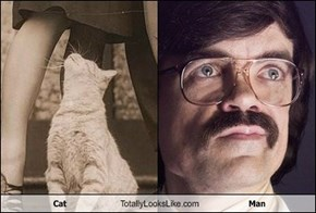 Cat Totally Looks Like Man