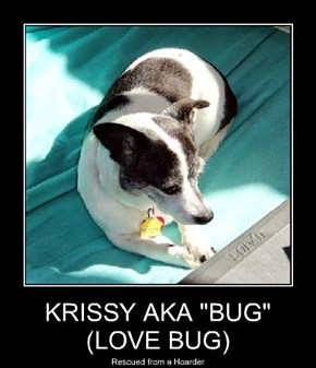 "KRISSY AKA ""BUG"" (LOVE BUG)"
