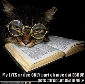 My EYES ar dee ONLY part ob mee dat EBBUR gets *tired* of READING ♥