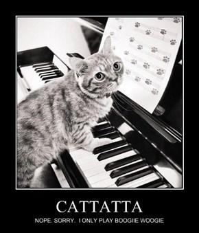 CATTATTA
