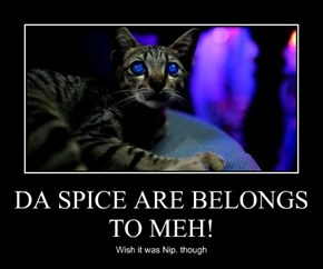 DA SPICE ARE BELONGS TO MEH!