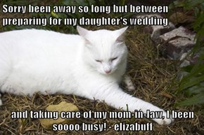 Sorry been away so long but between preparing for my daughter's wedding  and taking care of my mom-in-law, I been soooo busy! - elizabuff