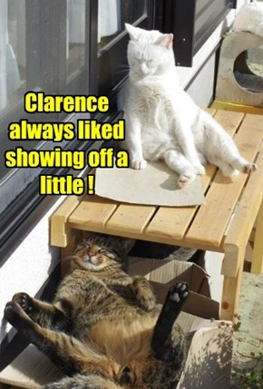 Clarence always liked showing off a little !