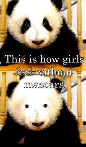 Bearly There Makeup Has Come a Long Way