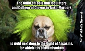 The Guild of Fools and Joculators  and College of Clowns in Ankh-Morpork         is right next door to the Guild of Assasins,  for which it is often mistaken