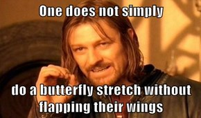 One does not simply  do a butterfly stretch without flapping their wings